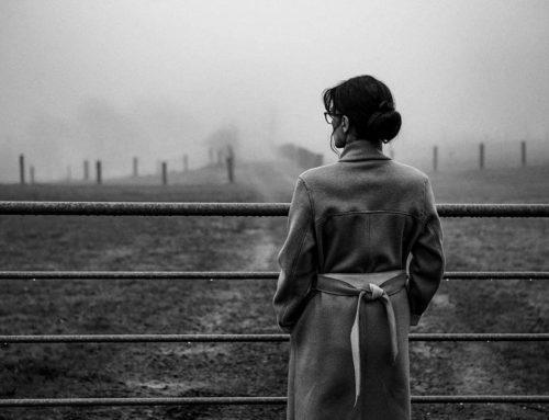Silvia im Nebel